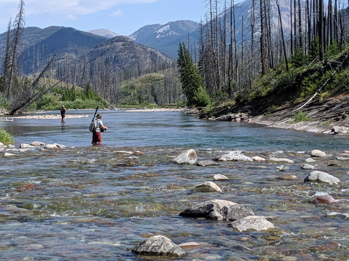 Fly Fishing South Fork