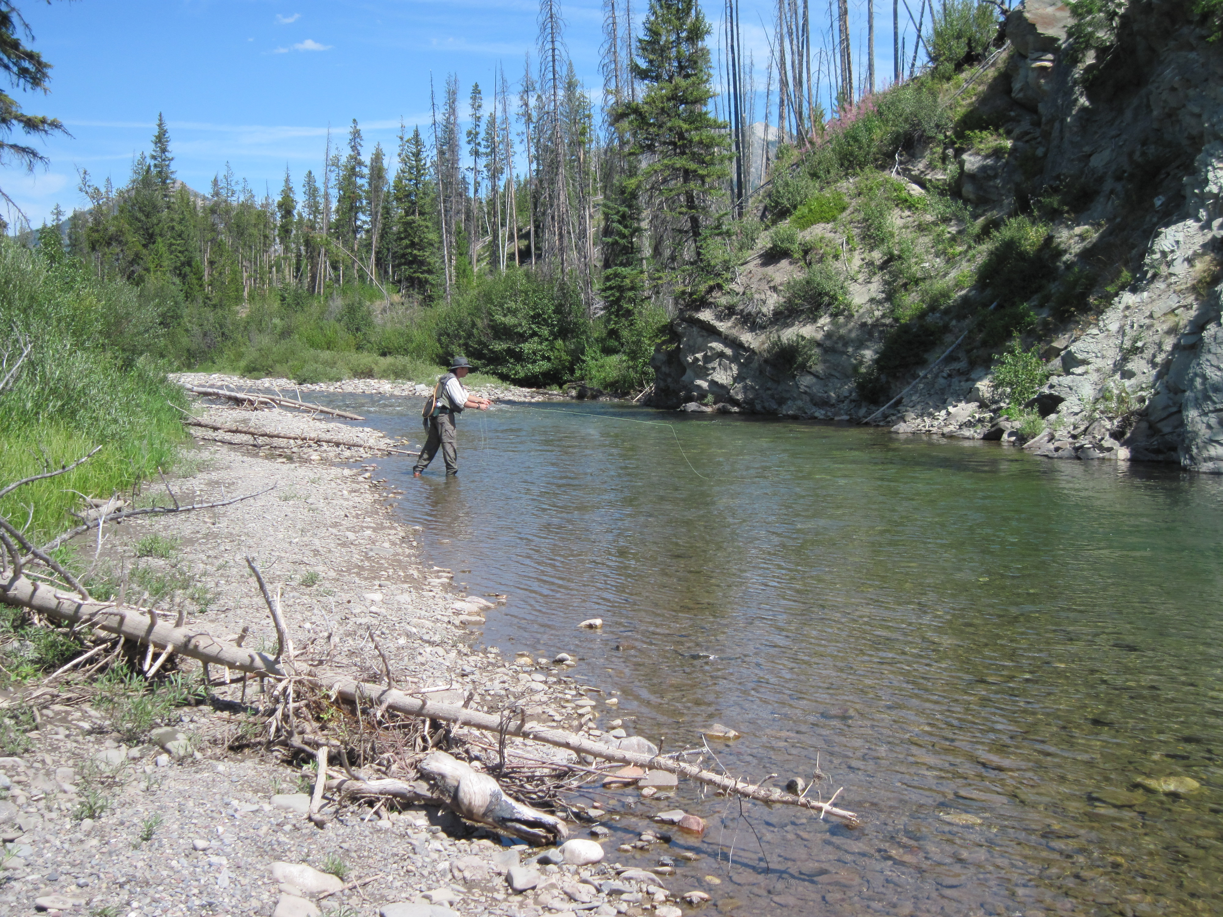 Fly Fishing North Fork Sun River